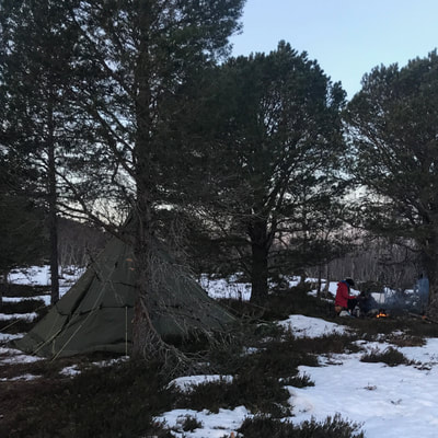 survival course in the arctic norway dutchexplorers
