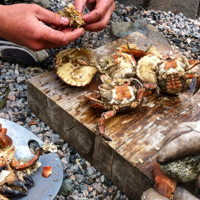 learning how to prepare crab in nature dutchexplorers