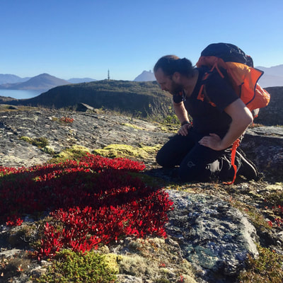 course finding food in wilderness of the coastal areas of Norway